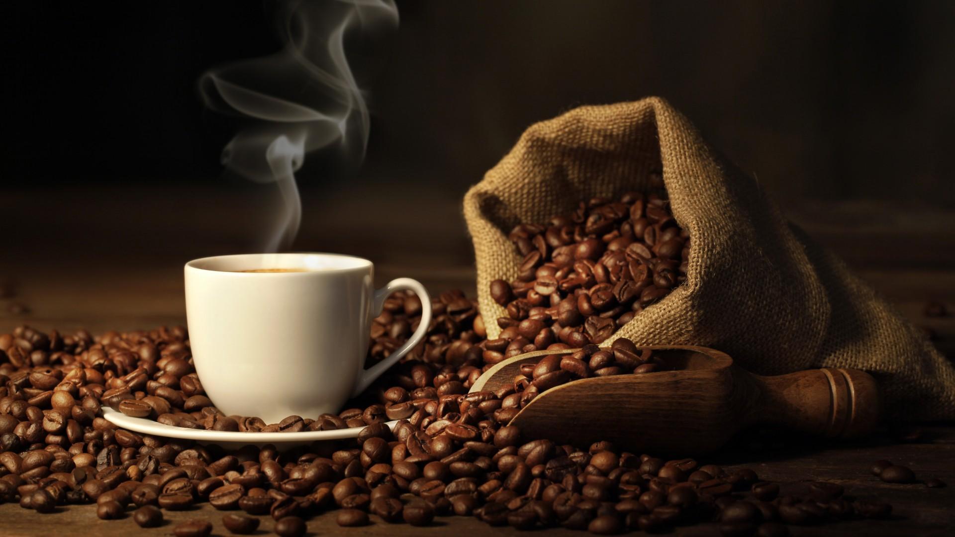 mô hình cà phê sách