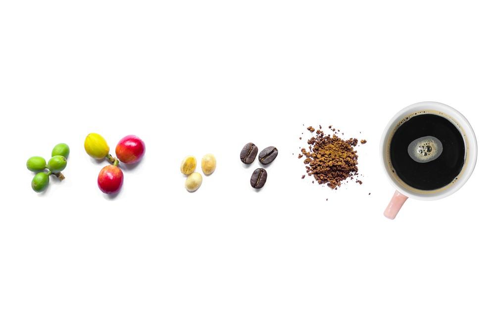 cac-loai-cafe-cherry