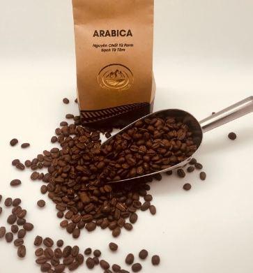cafe-arabica-leo