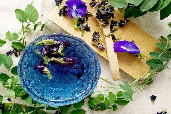 trà hoa đậu biếc nóng