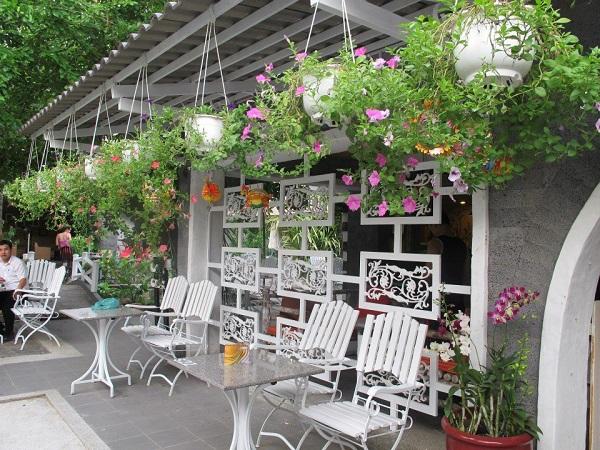 Không gian trở nên tươi mát và thân thiện khi dùng chậu cây cảnh và hoa tươi để trang trí ngày Tết