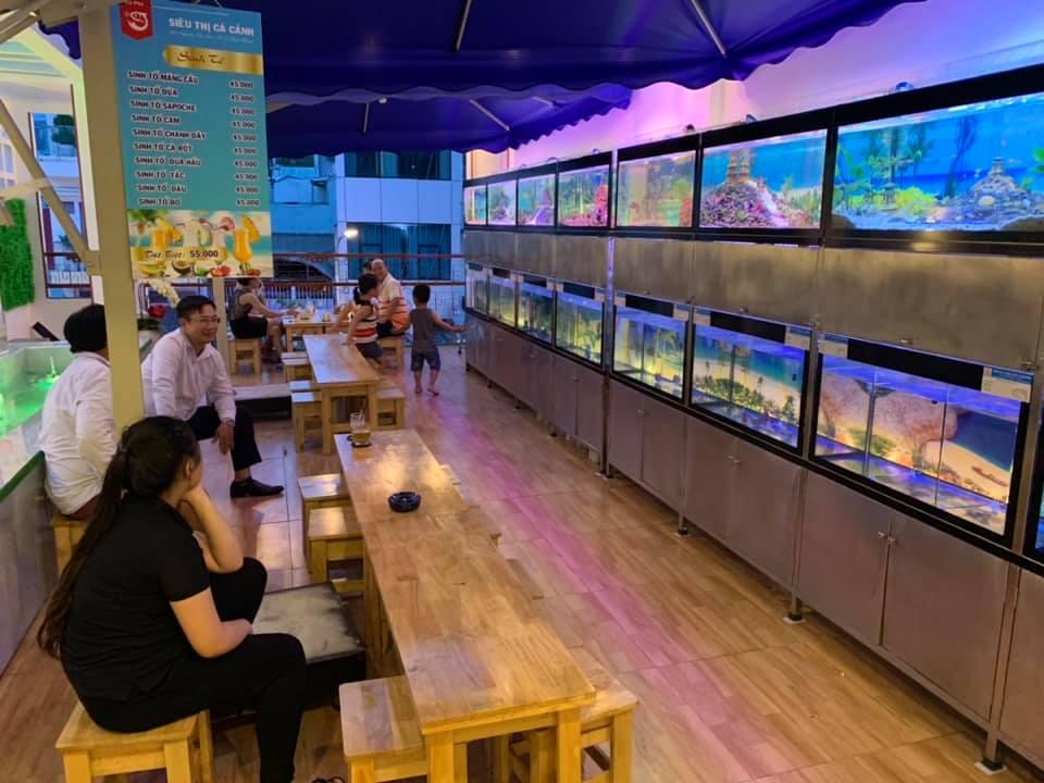 không gian màu sắc của cafe siêu thị cá cảnh