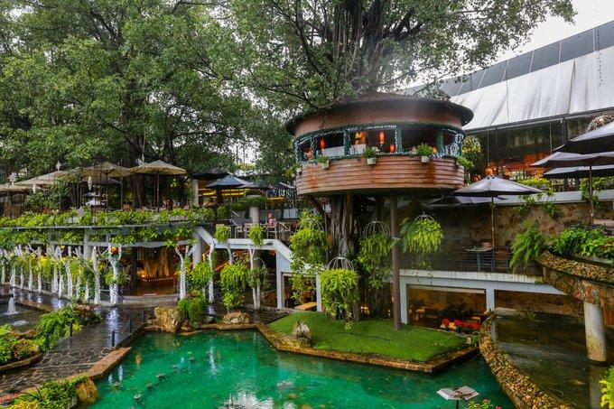 cafe sân vườn đẹp