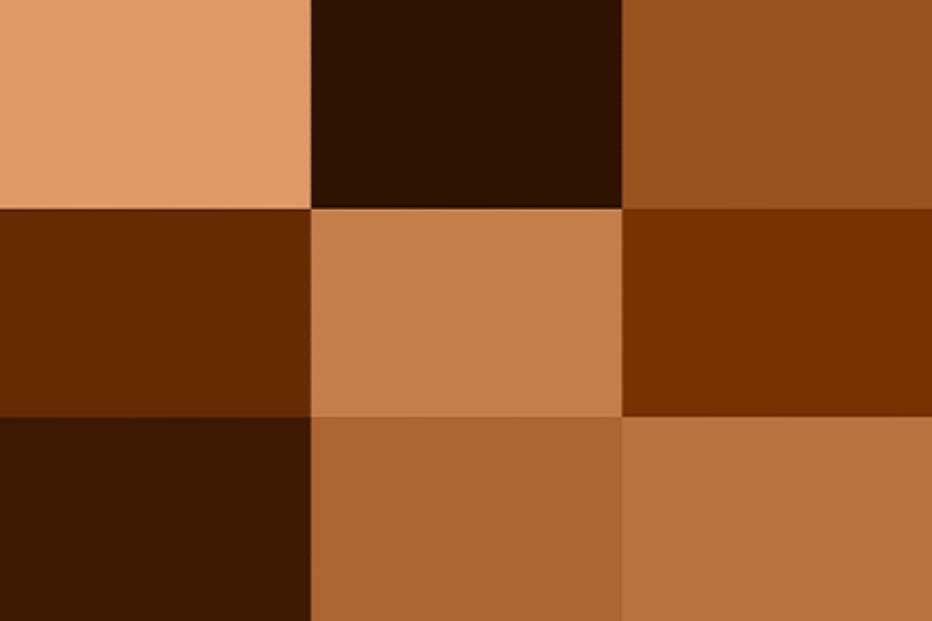 tông màu nâu