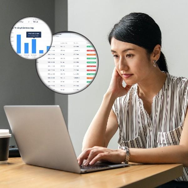 báo cáo doanh thu lợi nhuận