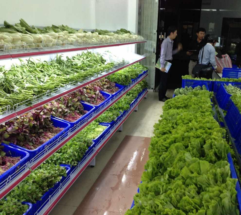 Kinh doanh trái cây rau củ nhỏ tại nhà
