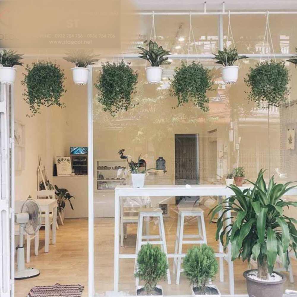 thiết kế quán cafe có không gian mở đơn giản