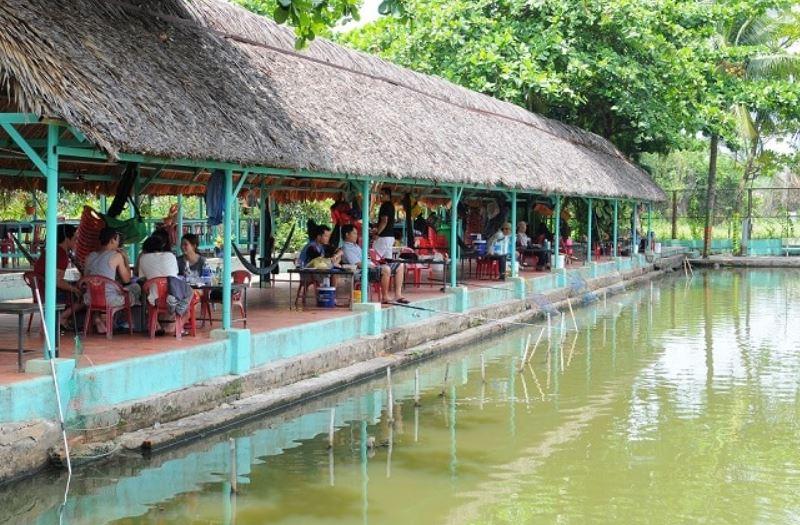 câu cá giải trí năm cây dừa